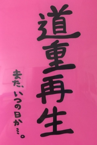 michishige-saisei
