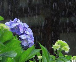 2018年九州梅雨