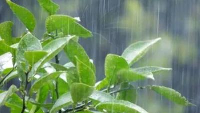2018年九州北側の梅雨入り時期