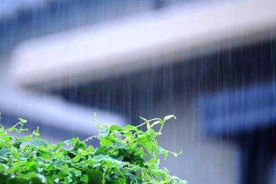 2018年九州南側の梅雨入り時期
